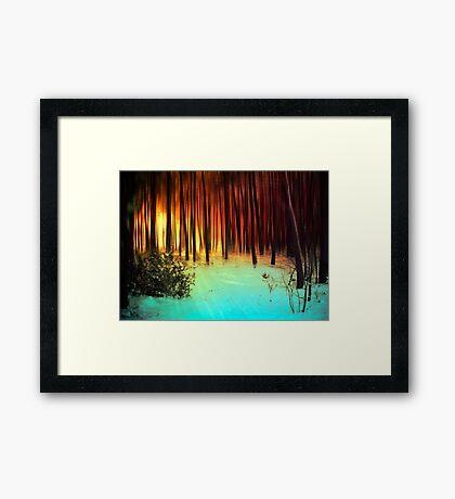 Bosque de invierno Lámina enmarcada