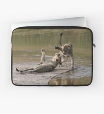 Young Lions Playing In Water Laptop Sleeve