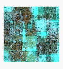 Patches of Earth Photographic Print