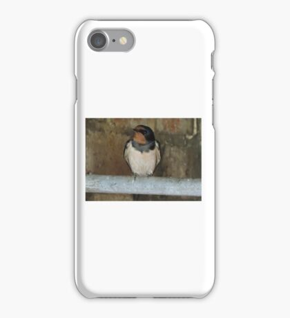 To Listen To The Stories iPhone Case/Skin