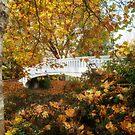 Coronation Bridge Stafford  by Ann Garrett
