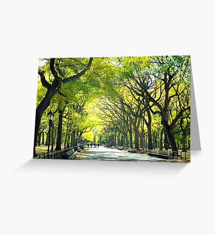 Avenue of Trees - Central Park Greeting Card