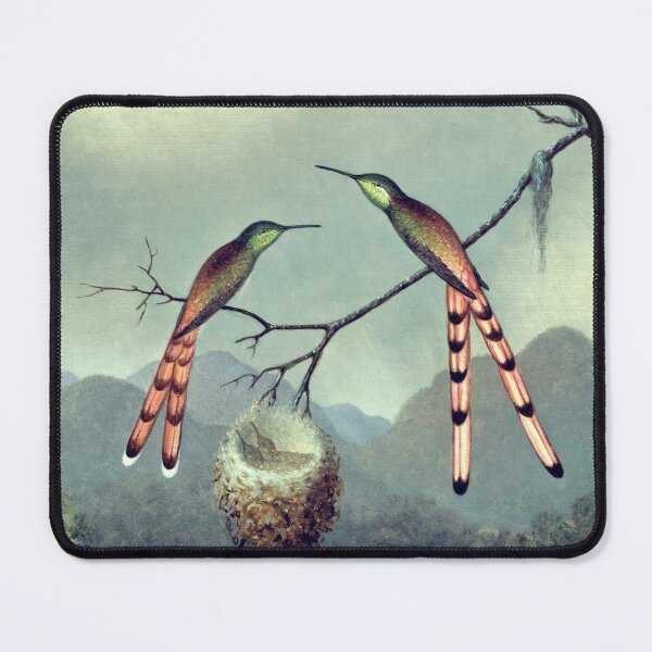 Hummingbirds at the nest with chicks Mouse Pad