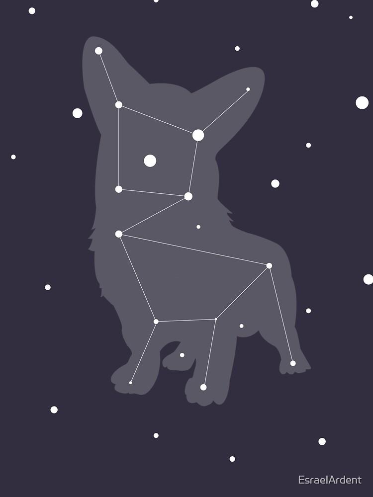 Corgi Constellation by EsraelArdent