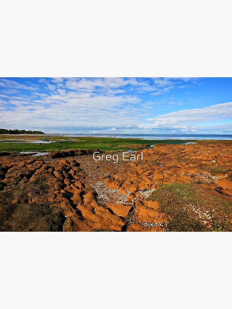 Low Tide Rickett's Point ll by GregEarl