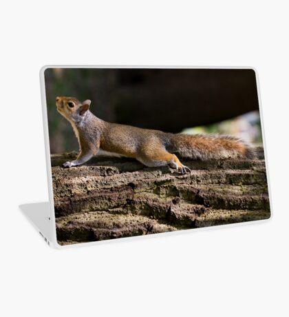 You can't see me! I'm part of the tree! Laptop Skin