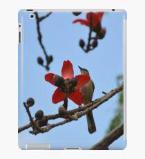 Mockingbird on a cotton tree 2 iPad Case/Skin