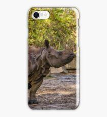 Nashorn - Afrika iPhone Case/Skin