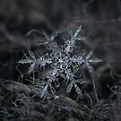 Snowflake 2 of 19 March 2013 by Alexey Kljatov