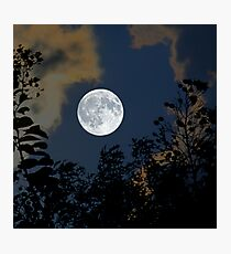 Moon Glo Photographic Print