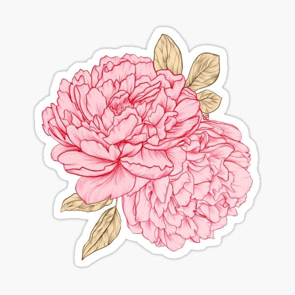 Pink Peonies Sticker