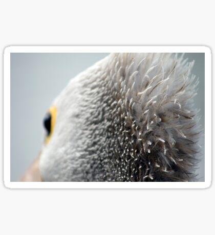 Hair Brained Pelican Sticker