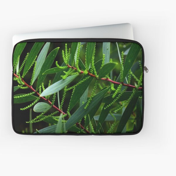 Acacia sophorae Laptop Sleeve