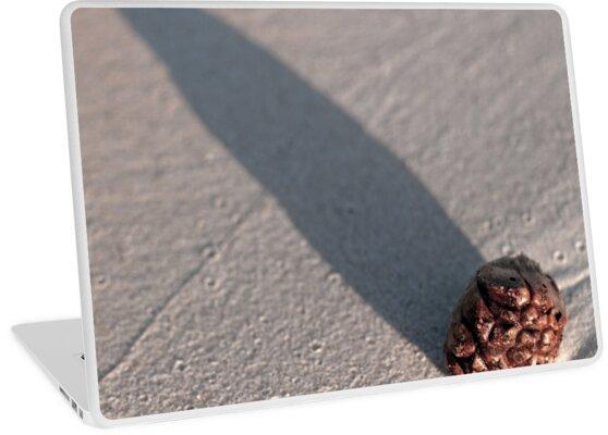 Shadow Cone by Odille Esmonde-Morgan