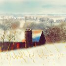 The Barn Over The Hill by Lois  Bryan