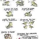 How to Identify Warblers by rohanchak