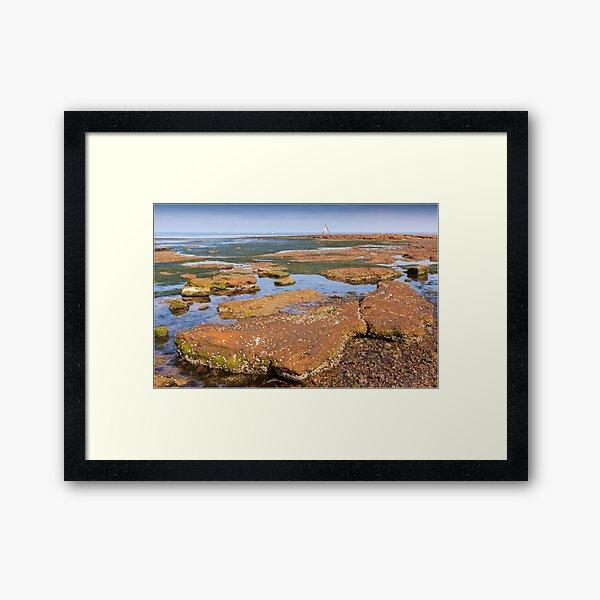 Low Tide - Rickett's Point Framed Art Print