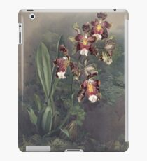 Reichenbachia Orchids illustrated and described by F. Sander 1888 V1-V2 049 iPad Case/Skin