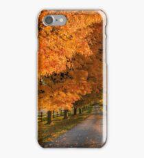 Bell Lane iPhone Case/Skin