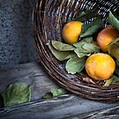 Fruits in a basket by Walter Quirtmair