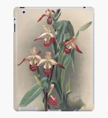 Reichenbachia Orchids illustrated and described by F. Sander 1888 V1-V2 089 iPad Case/Skin