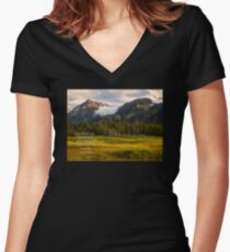 I Will Lift Up Mine Eyes unto the Hills Women's Fitted V-Neck T-Shirt