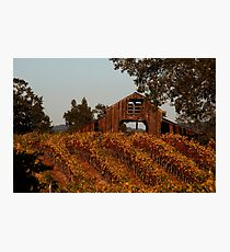 Old Slusser Rd. Barn Photographic Print