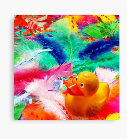 Felix - Feathers Canvas Print