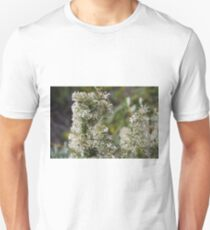 White Grevillea 2 Unisex T-Shirt