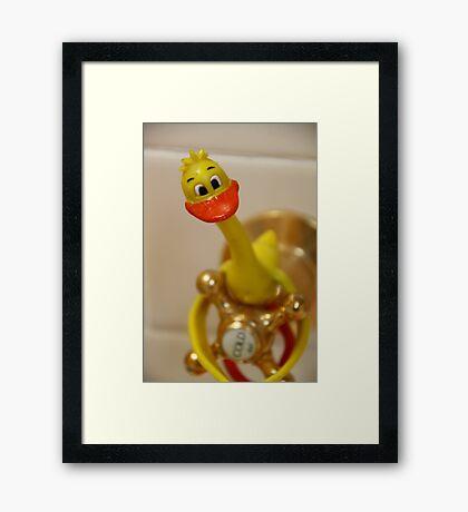 Vampire Duck? Framed Print
