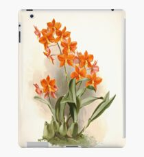 Reichenbachia Orchids illustrated and described by F. Sander 1888 V1-V2 047 iPad Case/Skin