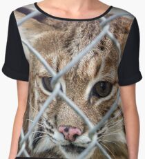 Bobcat Women's Chiffon Top