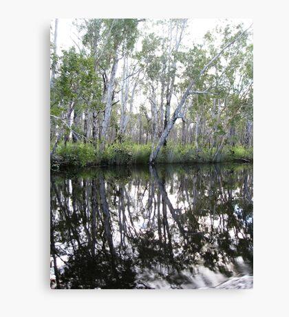 Noosa River Everglades - Reflections 1 Canvas Print
