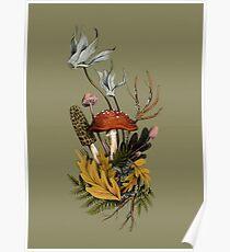 Autumnal Mushroom Woodland Scene Poster