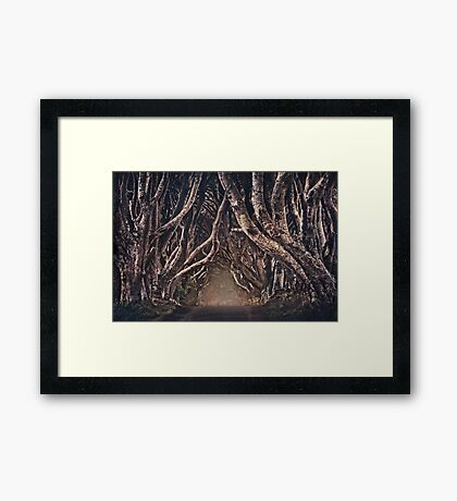 The Magical Path Framed Print