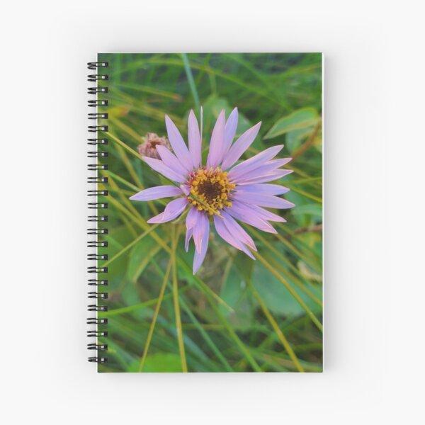 Indivual Beauty Spiral Notebook