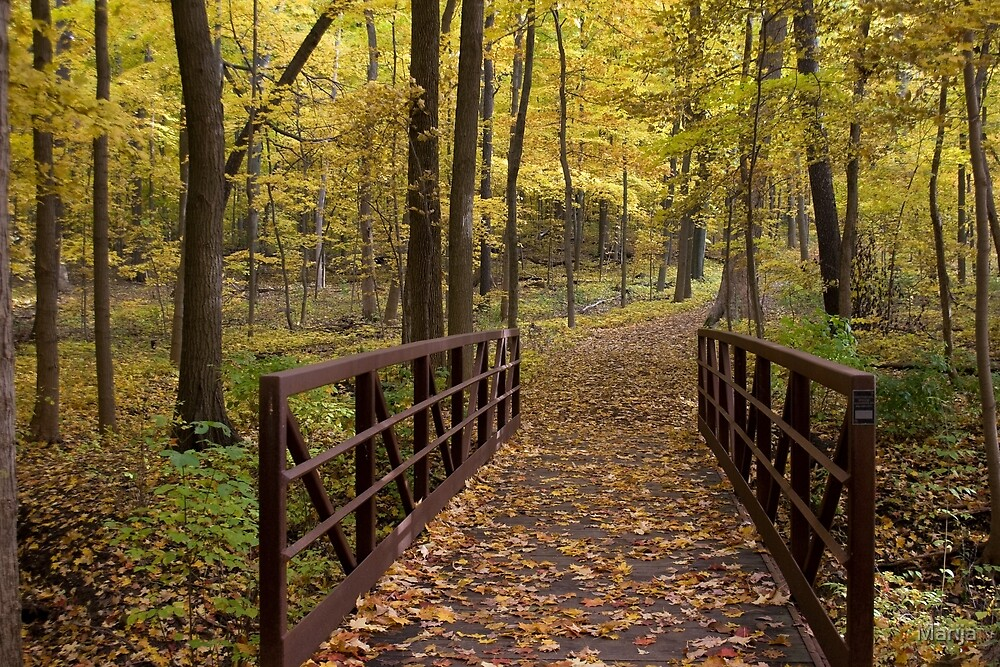 The Great Path by Marija