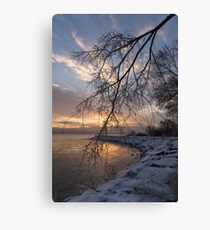 Beautiful Aftermath of an Ice Storm - Sunrise Through Frozen Branches Canvas Print