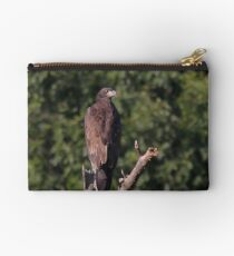 The Young Eaglet Profile Studio Pouch