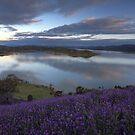 Bonnie Doon Lake Eildon  by Donovan Wilson