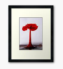 water poppy Framed Print