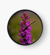 Fragrant Orchid, Dun Eochla, Inishmore Clock