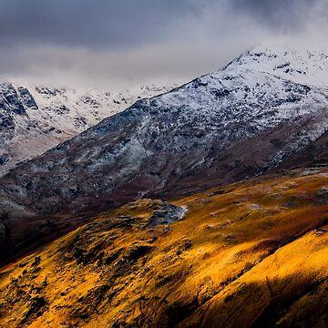 Golden Hillside by asabphotography
