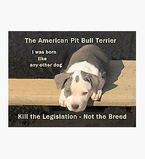 Unfair Breed Specific Legislation Photographic Print