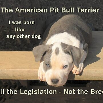Unfair Breed Specific Legislation by GinnyY