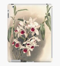 Reichenbachia Orchids illustrated and described by F. Sander 1888 V1-V2 050 iPad Case/Skin