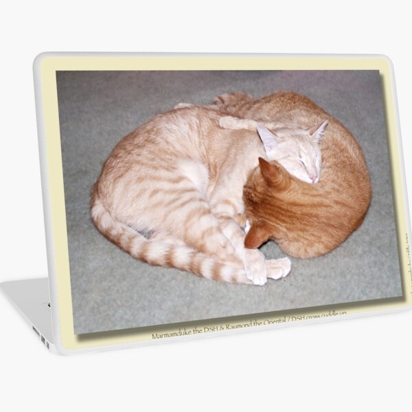 Cat calendar image #2 Togetherness!   Laptop Skin