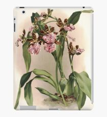 Reichenbachia Orchids illustrated and described by F. Sander 1888 V1-V2 016 iPad Case/Skin