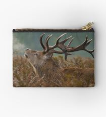 Red Deer Stag Studio Pouch