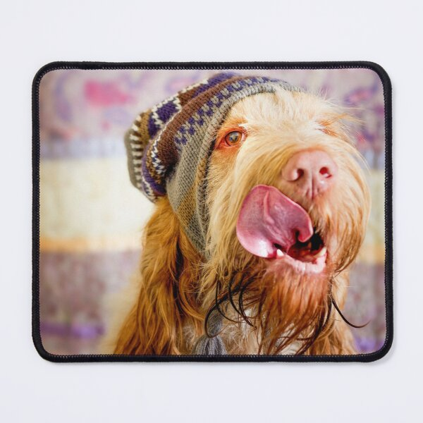 Delicious Spinone Mouse Pad